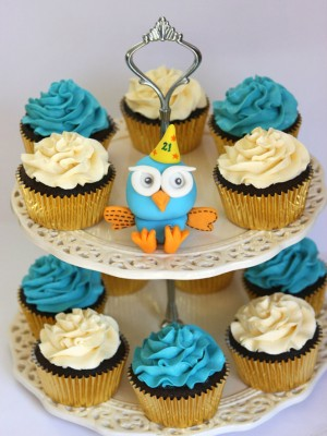 Hoot the Owl and Cupcakes