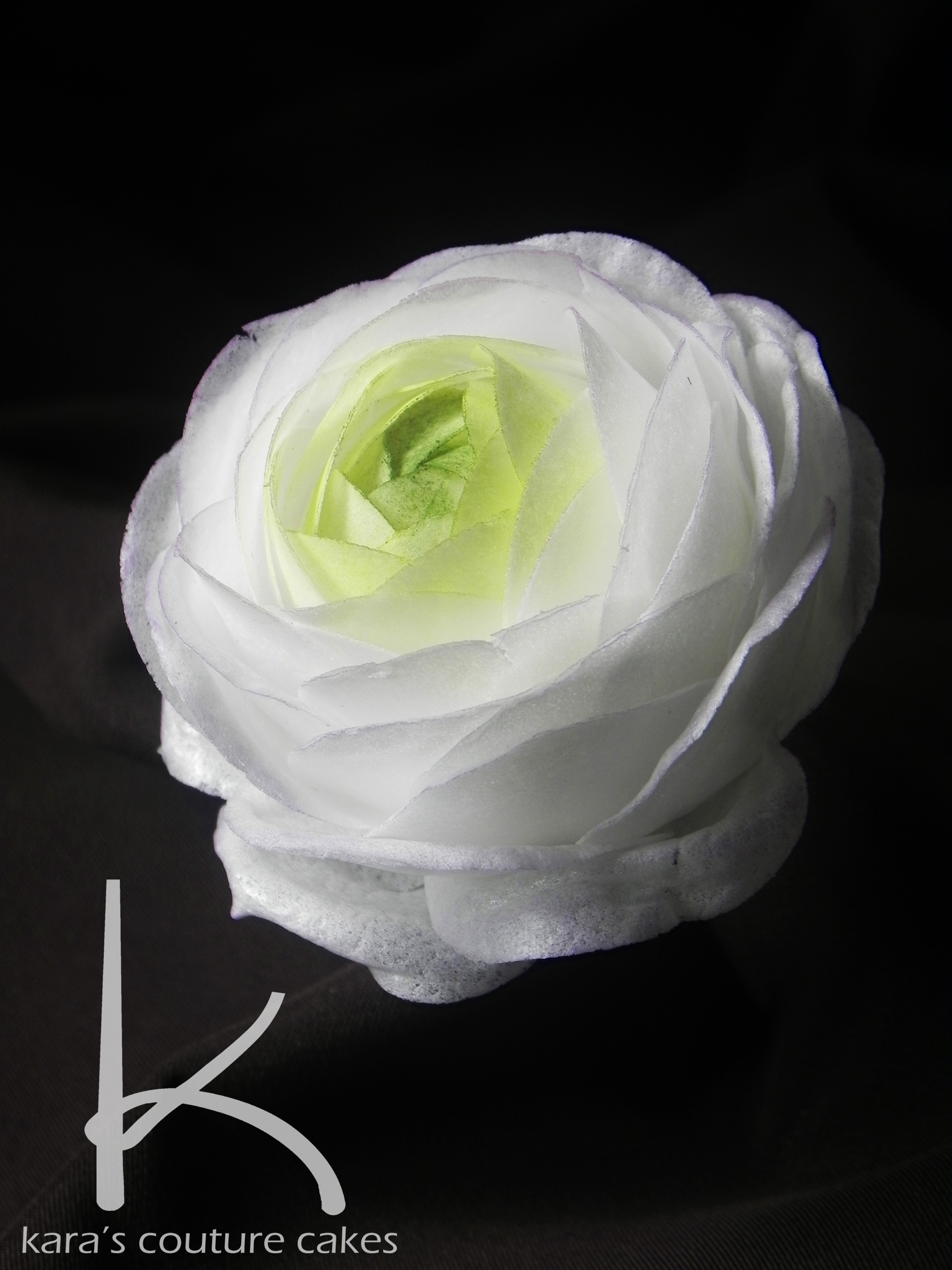 Wafer paper ranunculus tutorial cakecentral this flower took 20 minutes from punching the wafer paper to finishing dusting mightylinksfo