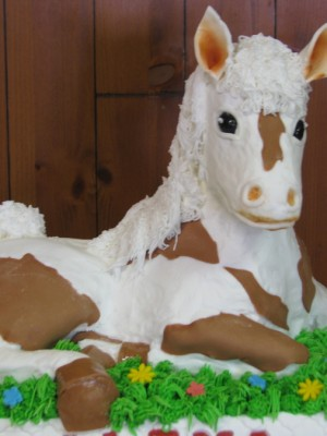 3D Horse B-Day Cake