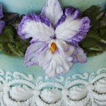 buttercream-iris3-150x150.jpg