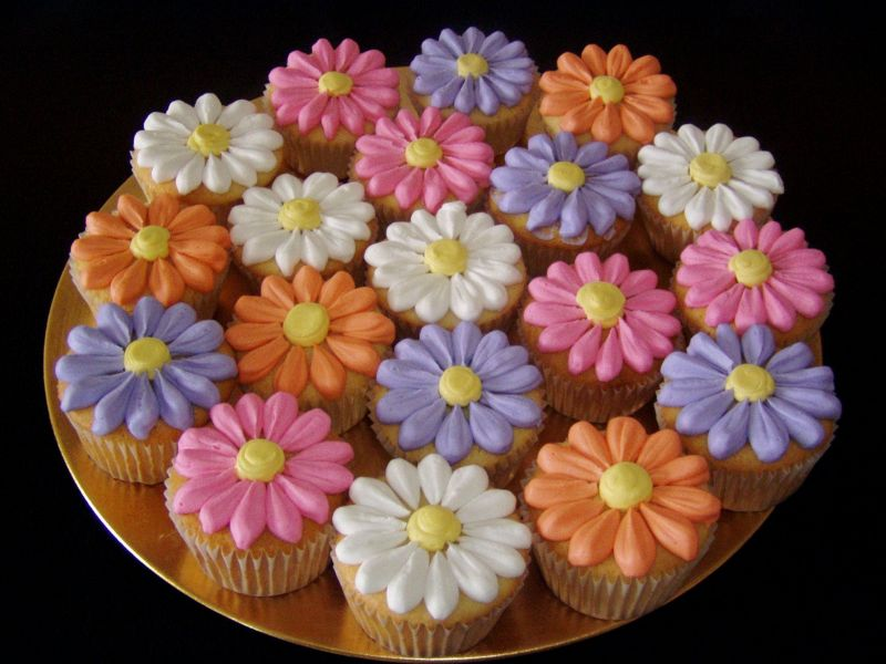 Flower Cupcakes 2 by alexandria.ray.5