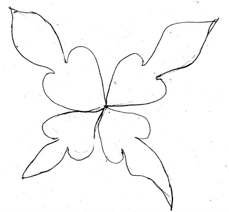 Flower Pattern to Trace Trace Flower Patterns