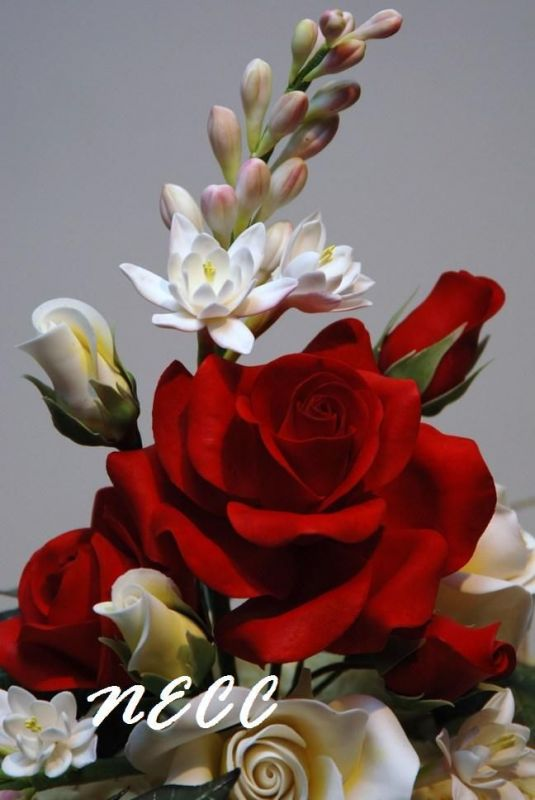 red rose flowers pictures gallery  magiel, Natural flower